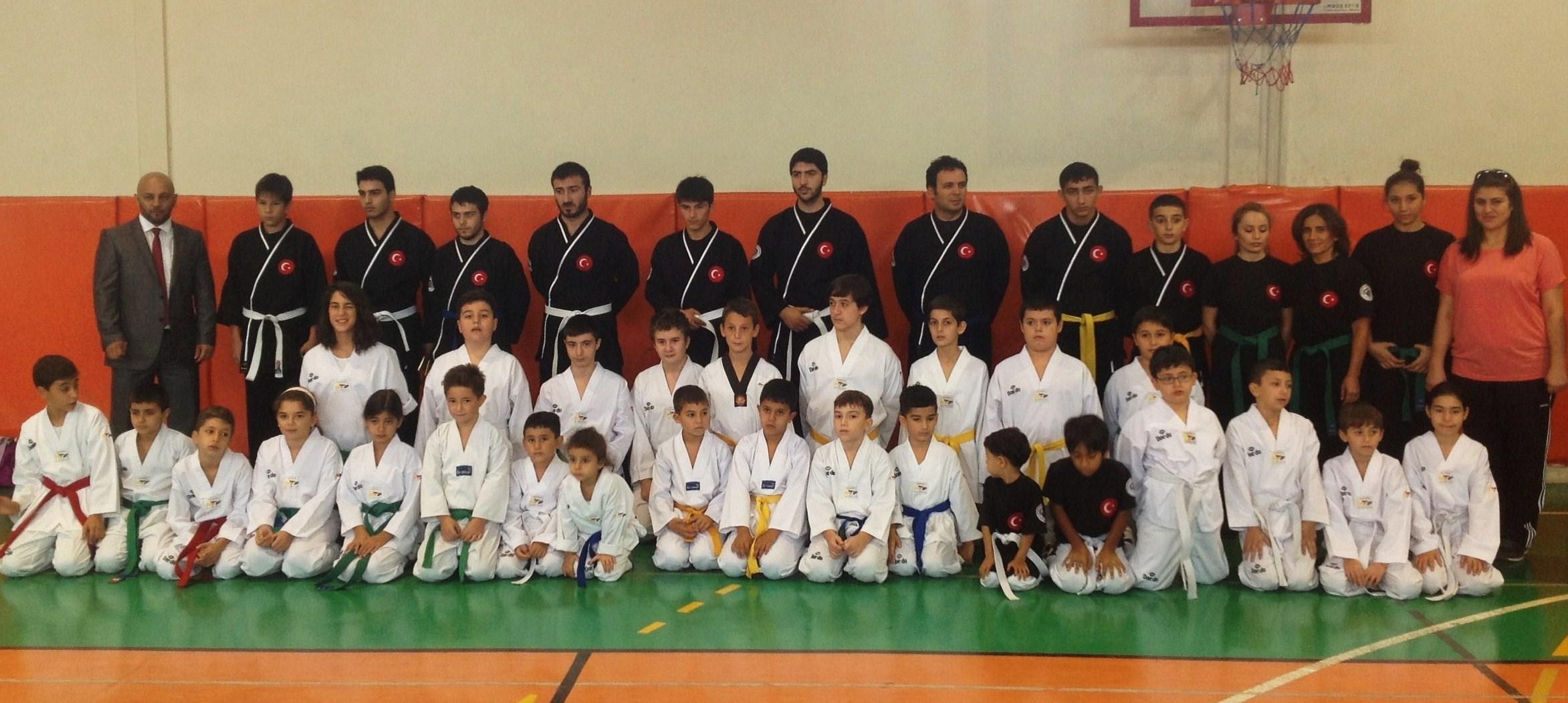 Hapkido ve Taekwondo