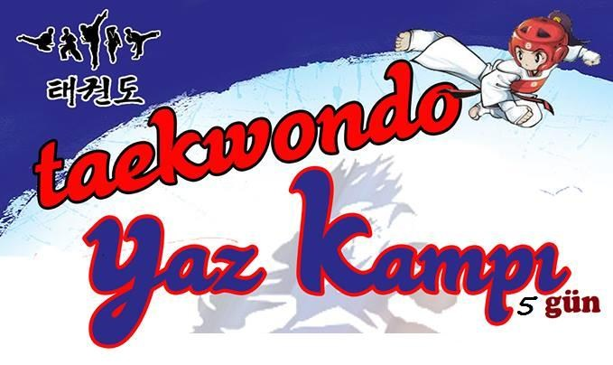 Taekwondo Yaz Kampı